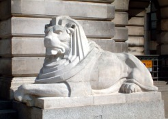 right lion