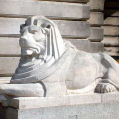 right lion