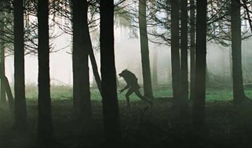 Dog-Soldiers-2002-Movie-Ixxxxxxxxxxx