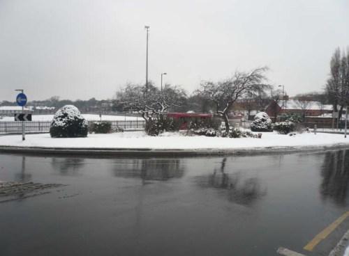 P1210888 snowy xxxxxxxxxx