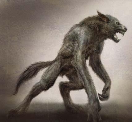 werewolf qqqqqqqqqqqqqqqqqqqqq