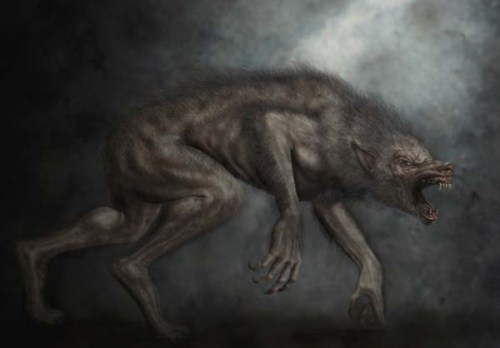 werewolf xxxxxxxxxxxxxxxxvvvvvvvbbbbbbb