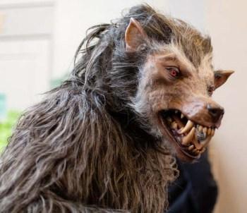 werewolf xxxxxxxxxxxxxxxxxxx