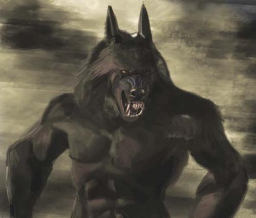 werewolf_van_helsing_zzzzzzzzzzzzzzzzzz