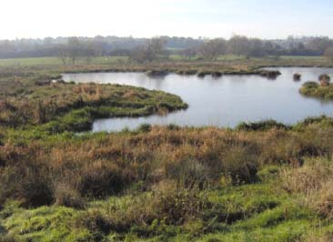 Erewash_Meadows_web