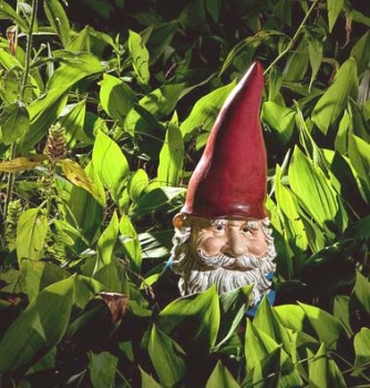 garden-gnome-among-lilies-of-the-valley-no47-randall-nyhof