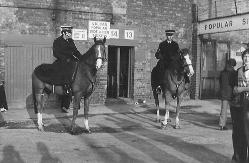 E ur more police horses -photo 3