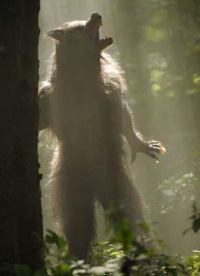 werewol